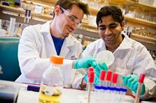 Biology & Biotechnology