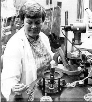 Muggleton-Harris in her lab in WPI's Salisbury Laboratories.