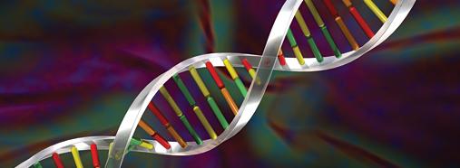 Data mining techniques in bioinformatics career